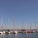 Bayfront sail boats