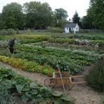 Dundurn Castle Kitchen Gardens