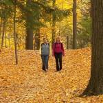 Fall hiking in leaves